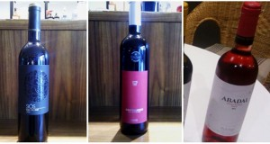 espai de vins 19