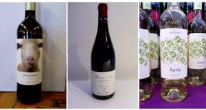 espai de vins 54
