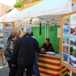 Sant Jordi Sant Andreu de la Barca 20