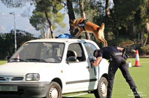 Jornades Unitats Canines Sant Andreu Barca -01