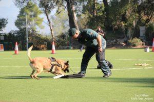 Jornades Unitats Canines Sant Andreu Barca -02