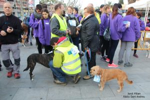 Caminada Solidària Marató TV3 Sant Andreu Barca 2016 -  09