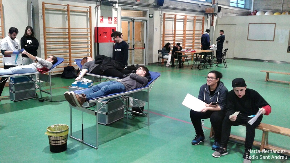 Campanya donació de sang IES PALAU