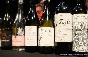1 Concurs Tast de Vins Sant Andreu de la Barca 12