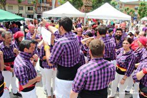 Fira de la Primavera 2018 - Diada Castellera 04