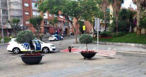 senglars a Sant Andreu Barca