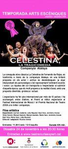 07 octaveta Celestina