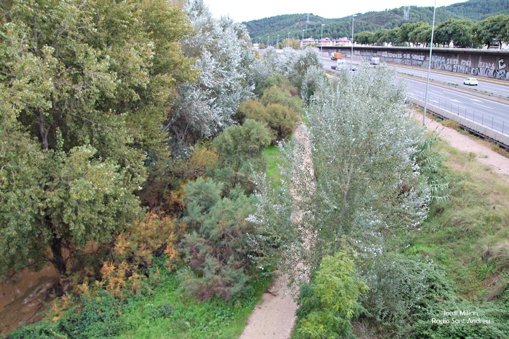 Visita OMS projecte riu Llobregat -02