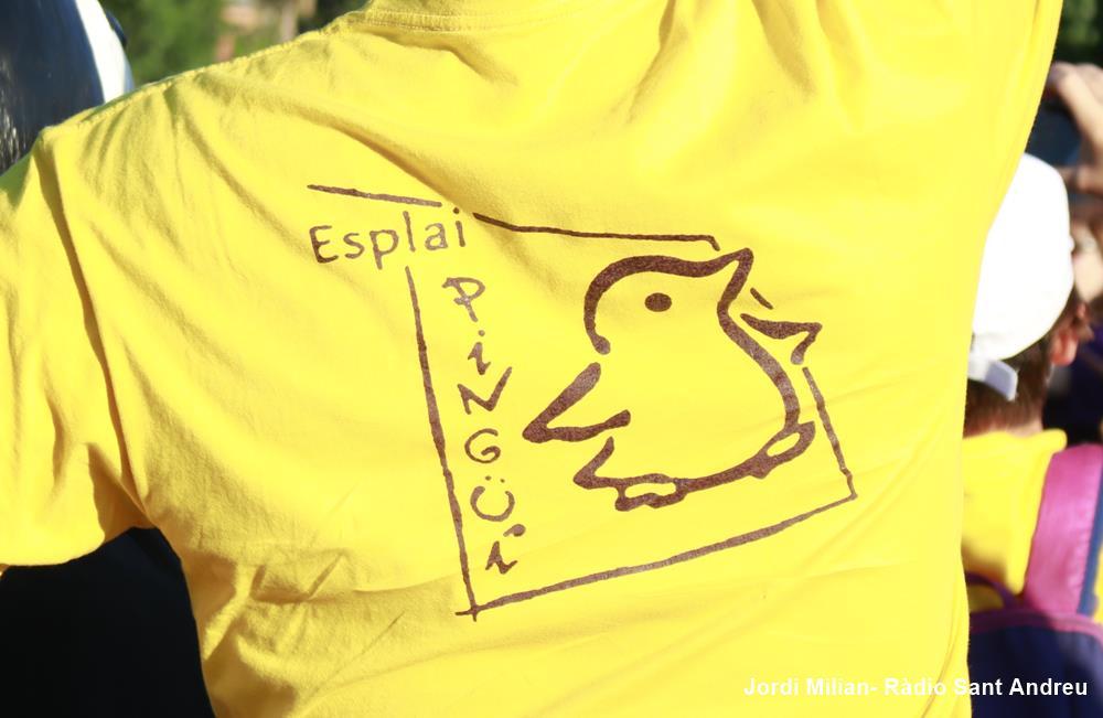 ESPLAI PINGÜÍ - FESTA 30 ANYS - 30