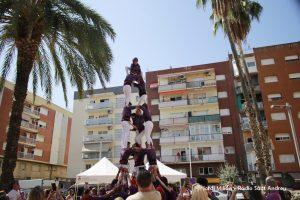 FESTA MAJOR 2019 - Diada Castelelrs de l'Adroc 08