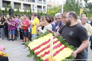 Diada Sant Andreu de la Barca 2019 - 08
