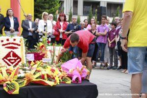 Diada Sant Andreu de la Barca 2019 - 14