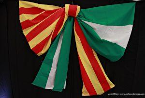 Dia Andalusia Sant Andreu de la Barca 10