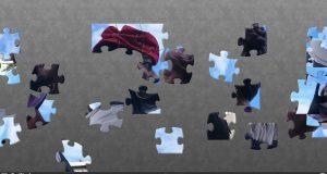 puzzles colla gegantera